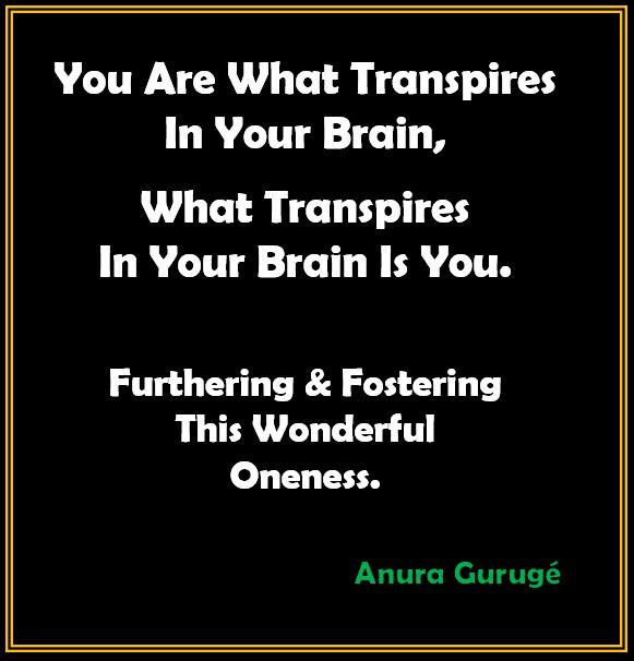 Brain Meditation Anura Guruge