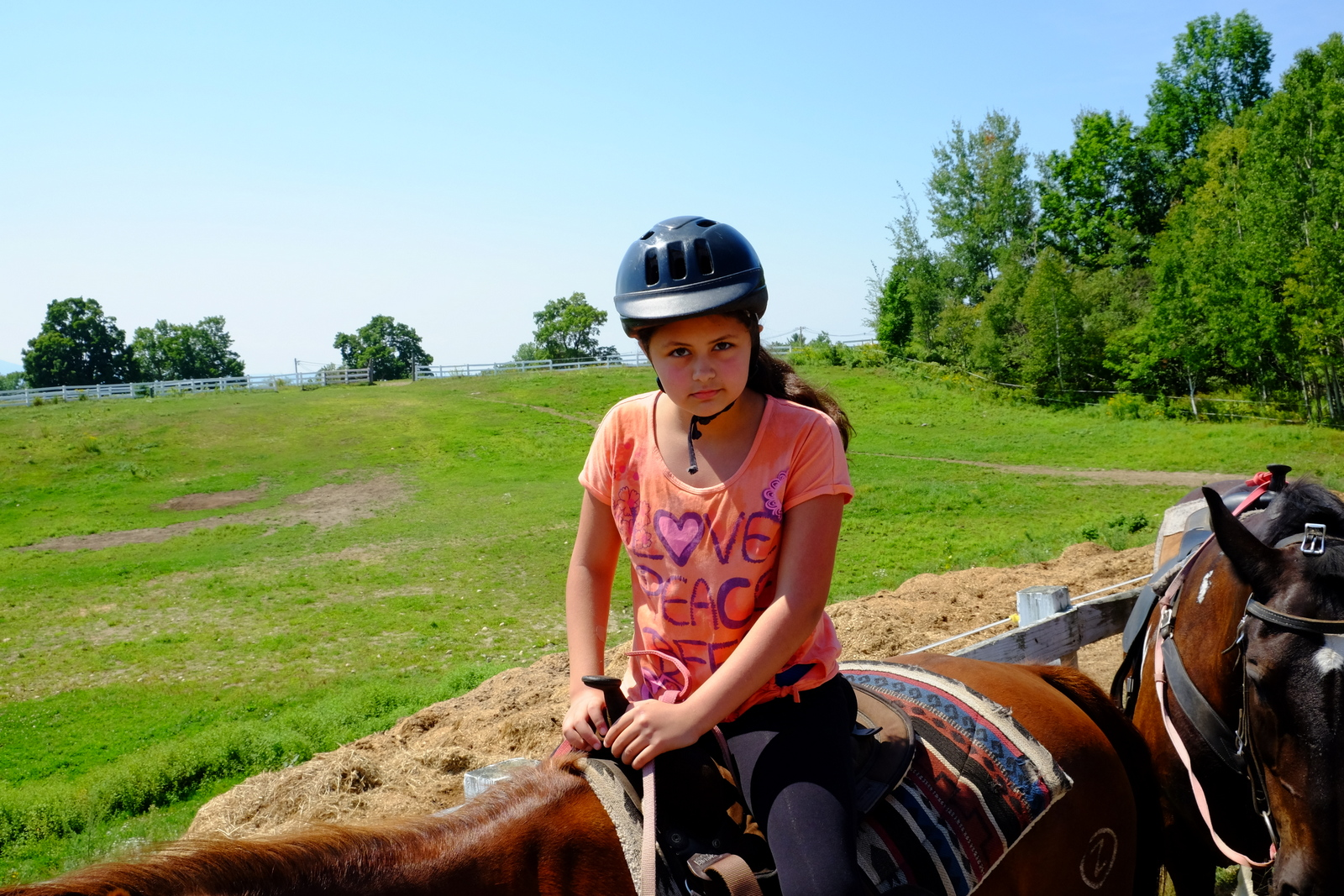 Was Quite The Experience Quite The Treat Too Very Relaxing And Obviously Enjoyable Brilliantly Docile Horses Piece Of Cake To Ride And